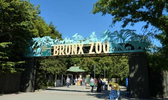 weltreise planen bronx zoo usa amerikareise