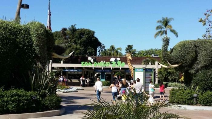 weltreise planen san diego zoo kalifornien usa reies