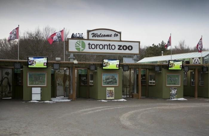 weltreise planen toronto kanada zoo