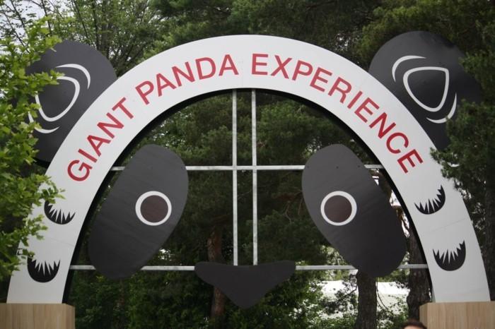 weltreise planen toronto zoo kanada panda