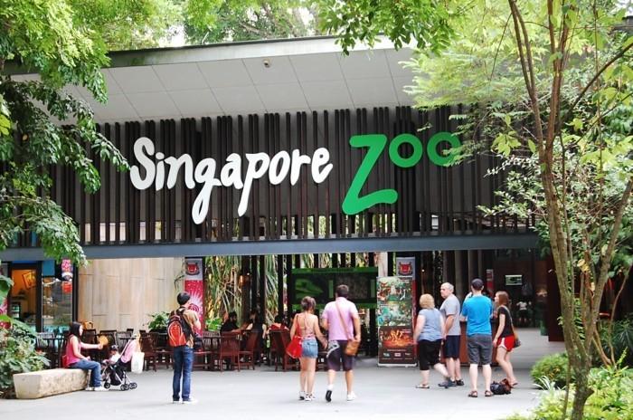 weltreise planen zoo singapur asienreisen