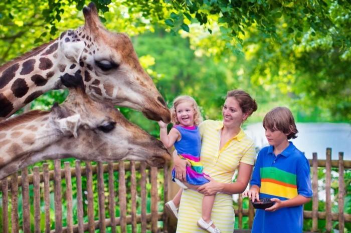 weltreise planen zoo singapur reisen asien