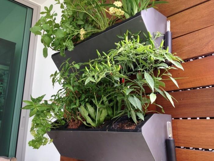 wohnideen balkon gestalten kräuter züchten