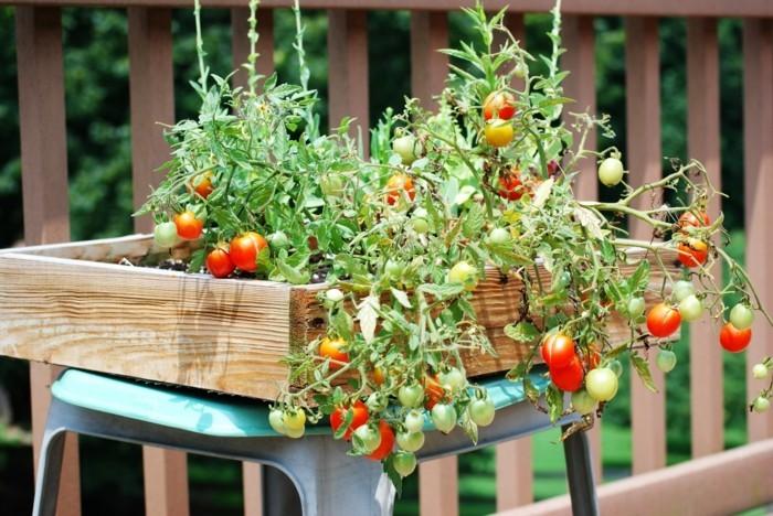 wohnideen garten balkon gestalten gemüse