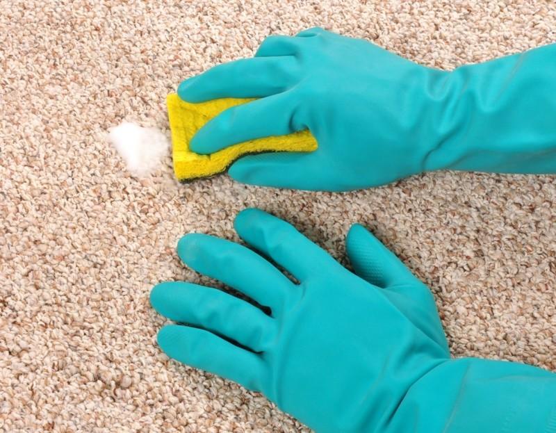 Teppich selber reinigen Haushaltsmittel Tipps und Tricks