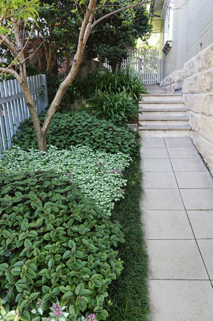 Gartengestaltung Ideen Bodenbelag Pflanzen Gartenzaun