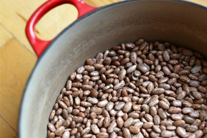 gesunde ernährung bohnen proteine