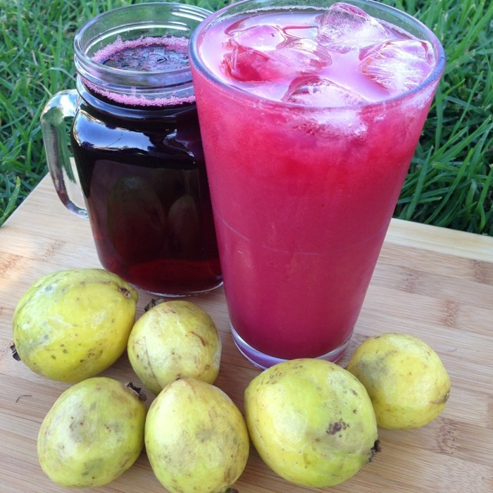 gesundes obst lebe gesund guave hauptsache gesund smoothie