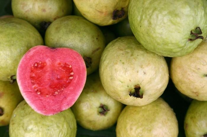 gesundes obst lebe gesund guave hauptsache gesund wallpaper