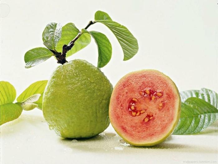 gesundes obst lebe gesund guave hauptsache gesund wallpaper4