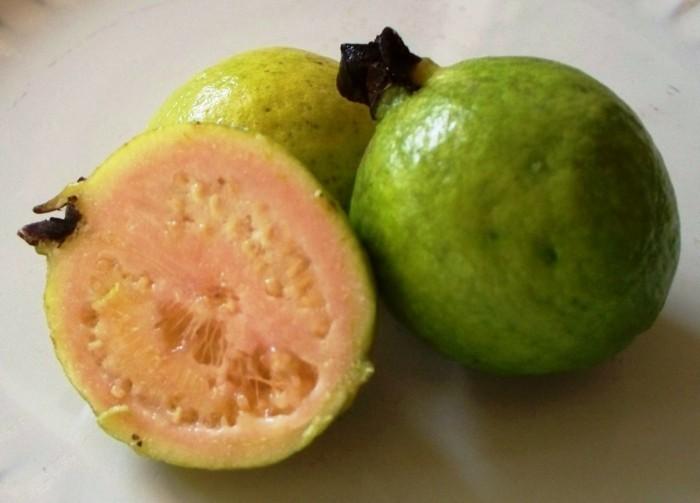 gesundes obst lebe gesund- guave hauptsache gesund wallpaper5