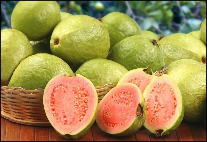 gesundes obst lebe gesund guave hauptsache gesund