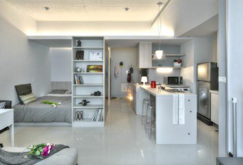 kleine-wohnung-einrichten-einzimmerwohnung-kuchenzeile-kucheninsel-bucherregale