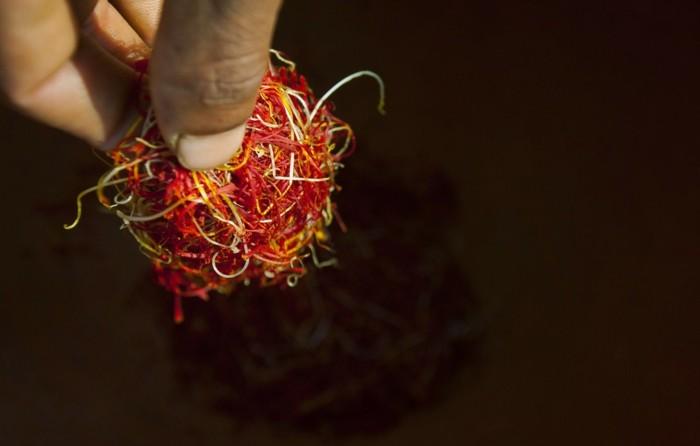safran gewürz heilkräuter lebe gesund safran blüte verarbeitung