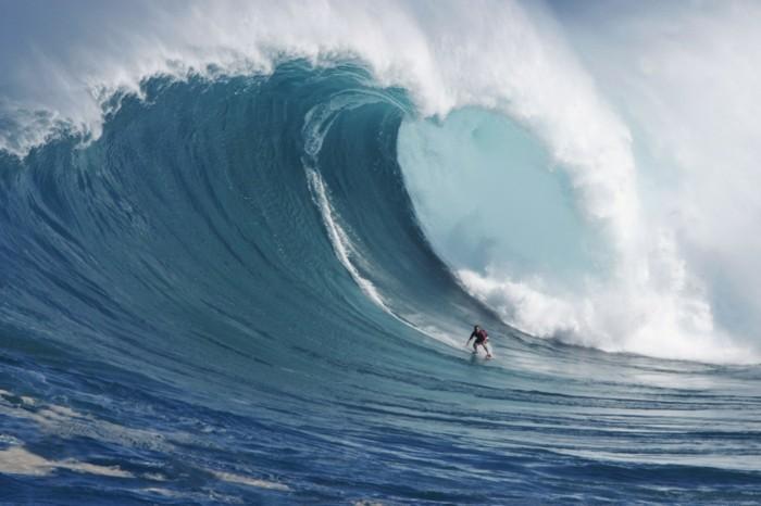 weltreise hawai widder 2