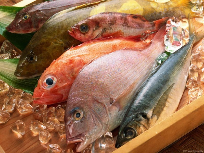 fisch diät verschiedene sorten gesunde ernahrung