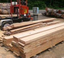 Lärchenholz im Vergleich zu anderen Holzarten