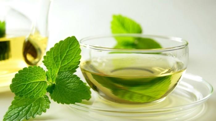 gesunder tee gesundheit lifestyle grünen tee trinken abnehmen