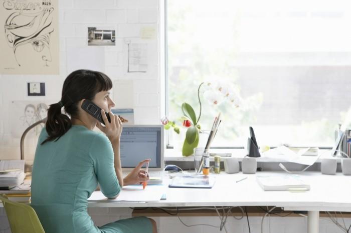 home office einrichten helles ambiente pflanzen