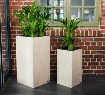 garten pflanzen gartengestaltung gartenbau freshideen 1. Black Bedroom Furniture Sets. Home Design Ideas