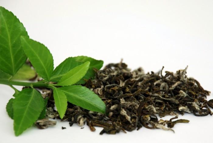 tipps gegen stress grüner tee auswirkung