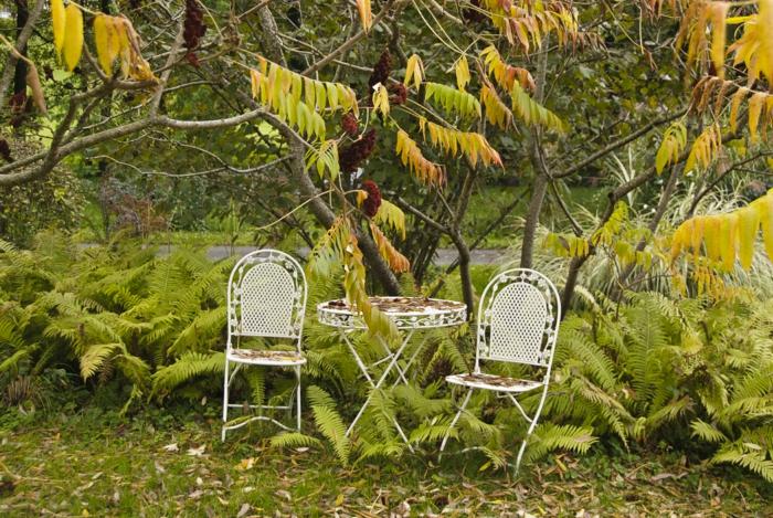 wie gestalte ich meinen garten herbst bäume vintage außenmöbel