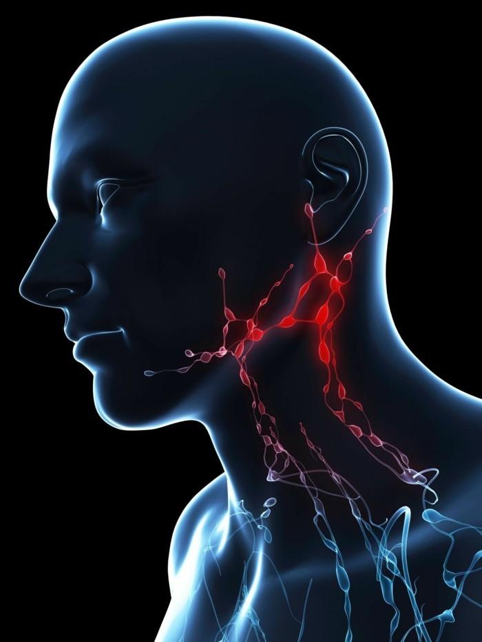 wo sind die lymphknoten dunkel