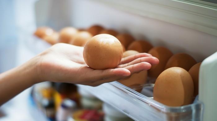 lebe gesund eier kühlschrank staiuraum ideen