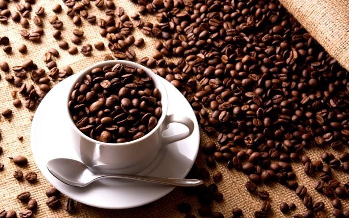 lebe gesund kaffee aufbewahren produkte kueche