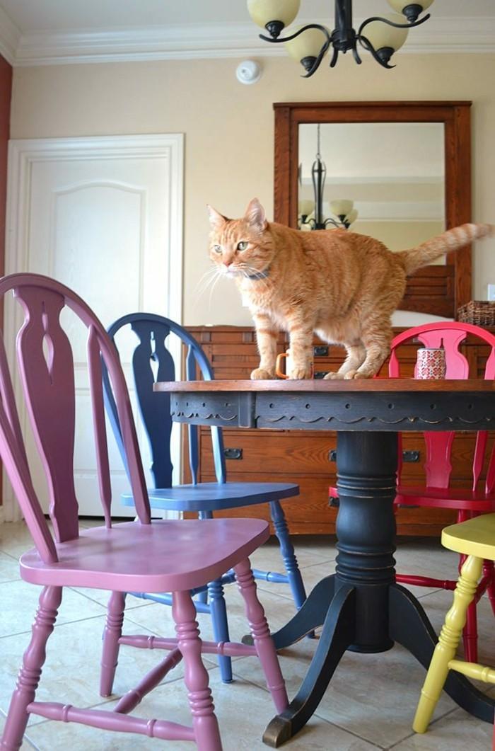 bunte küche farbige stühle runder esstisch katze