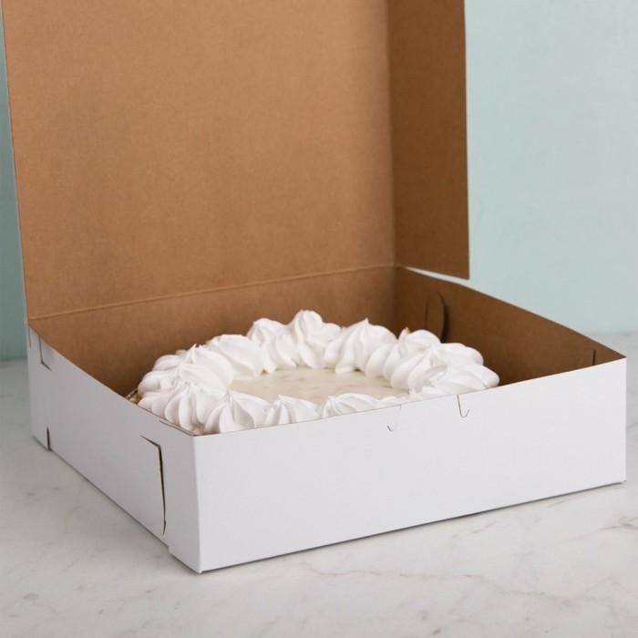 kuchen transportieren tortenkarton geschenkideen