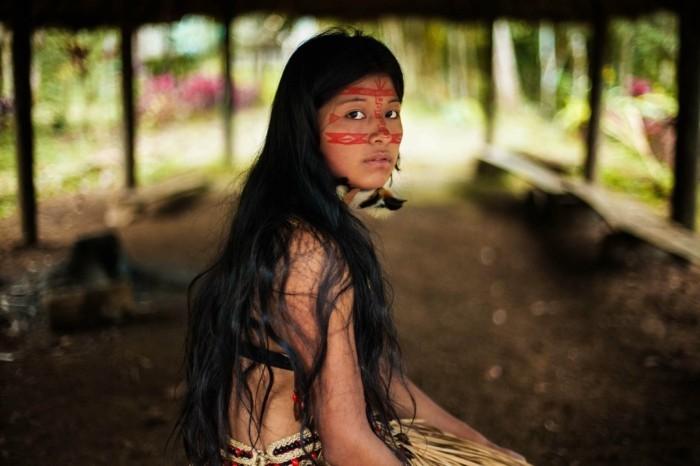 amazon regenwald einheimische