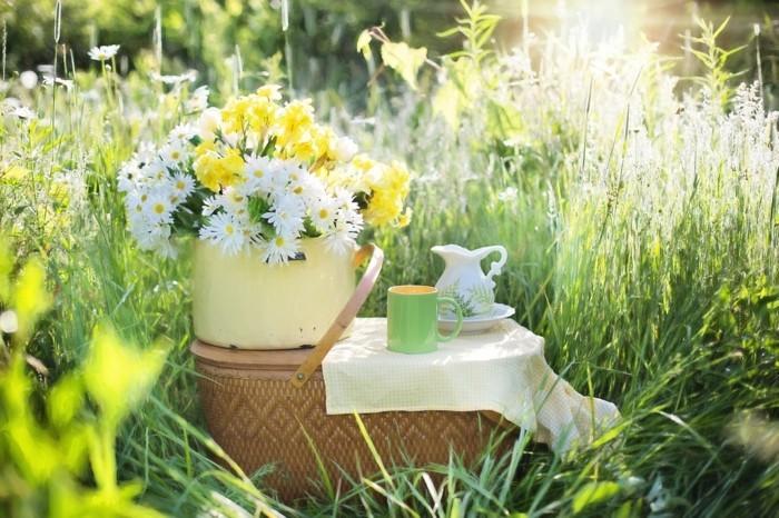 guten morgen kaffee daisies 1466851 1280