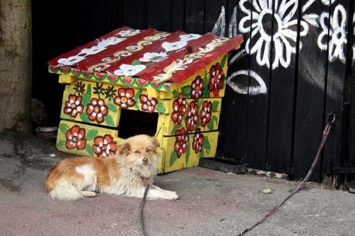 hausfassade gestalten zalipie hundehaus dekorieren gartenzaun dekorieren