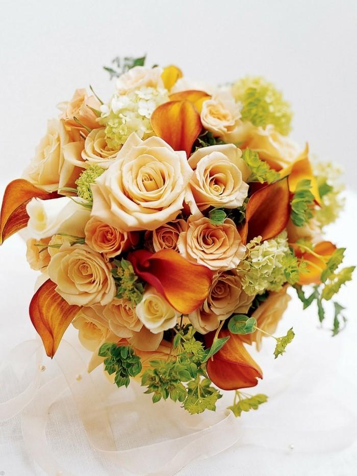 pfirsicht farben rosen