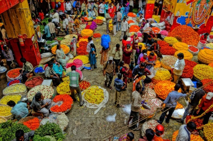 safran verkaufen markt