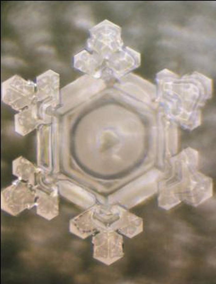 wasserkristalle buddist dankbar