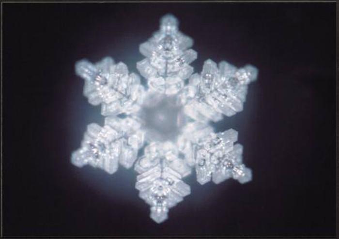 wasserkristalle buddist wahrheit
