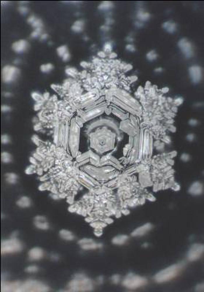 wasserkristalle buddist