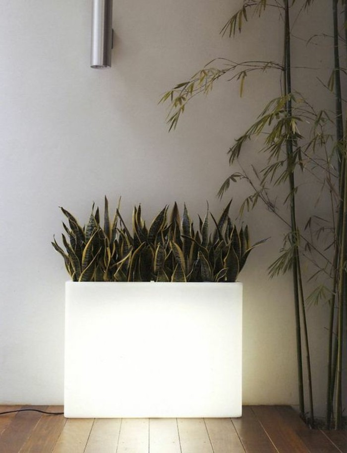 wohnungsdekoration ideen pflanzenbehälter leuchte