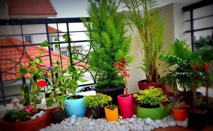 Blumentopf Bemalen Balkon Und Garten Kreativ Gestalten 30 Deko Vorlagen