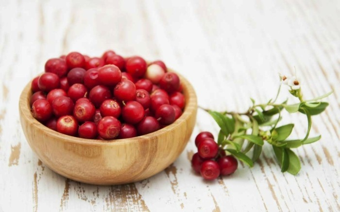 cranberries waldbeeren blaubeeren vegan abnehmen