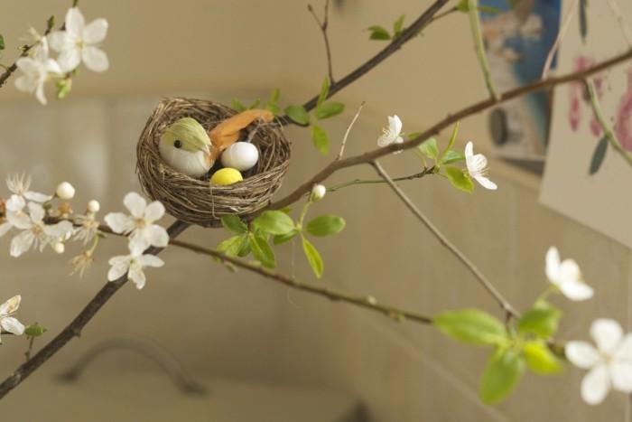 ein kleines nest auf dem baum aufgebaut