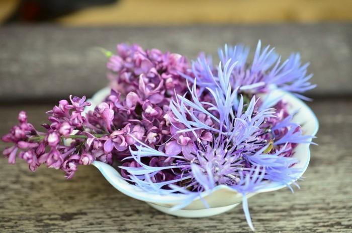 frühlingsblumen flieder in porzellan schale