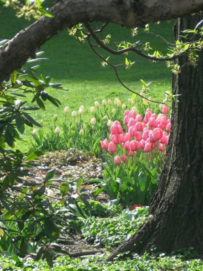 garten dekorieren ostern tulpen