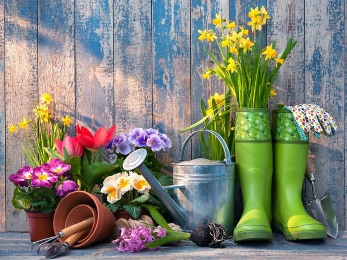 gartenzubehör gartenpflanzen primel narzissen bummistiefel grün