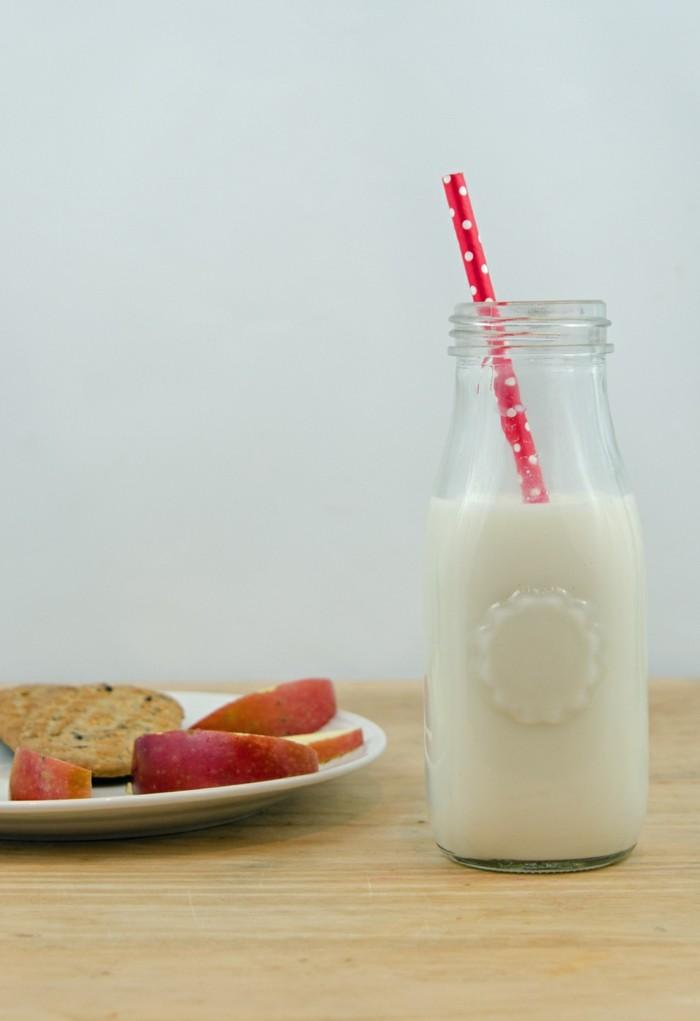 heißgetränke-ideen-vanillemilch-zubereiten