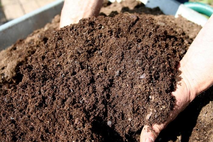 kompost anlegen bio dünger