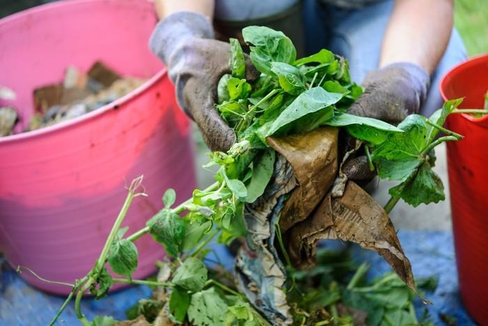 kompost anlegen biomüll küche spinat reste