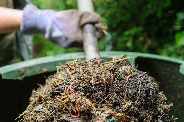 kompost anlegen biomüll küche spinat2